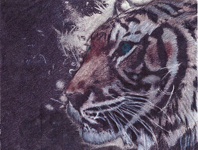 Charcoal Mixed Media - Tiger by Laurietta Oakleaf