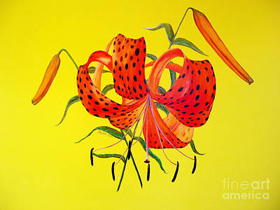 Tiger Lily Painting - Tiger Lily Bouquet by Joey Nash