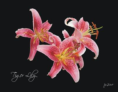 Photograph - Tiger Lily by Joe Duket