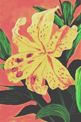 Painting - Tiger Lily by Sophia Schmierer