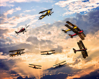 Photograph - Tiger Moth Ballet by Chris Lord