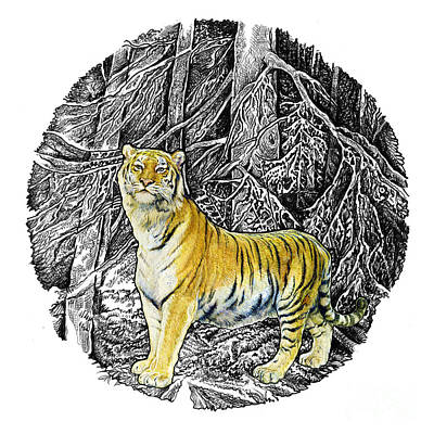 Tiger Art Print by Natalie Berman