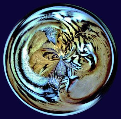 Tiger Orb Art Print by Paulette Thomas