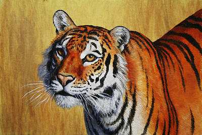 Siberian Wall Art - Painting - Tiger Portrait by Crista Forest