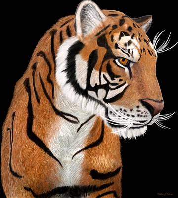 Digital Art - Tiger Portrait by Walter Colvin