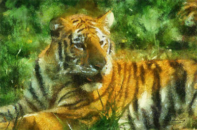 Asian Tiger Digital Art - Tiger Resting Photo Art 02 by Thomas Woolworth