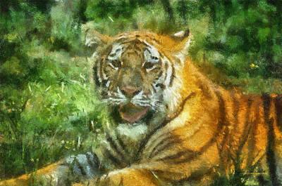 Asian Tiger Digital Art - Tiger Resting Photo Art 05 by Thomas Woolworth