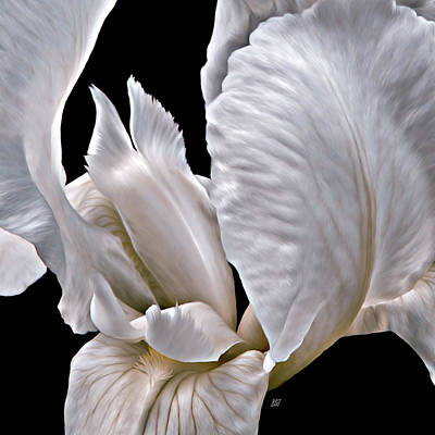 Photograph - Tiger Striped Iris Heart by Barbara St Jean