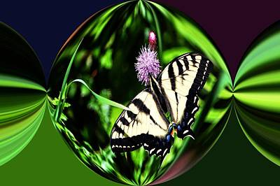 Canadian Photograph - Tiger Swallowtail Digital Art by Don Mann