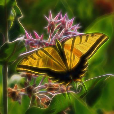 Digital Art - Tiger Swallowtail Digital Art by Ernie Echols