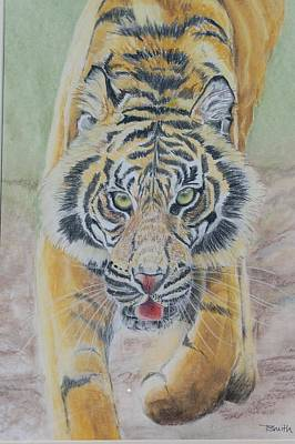 Painting - Tiger by Teresa Smith