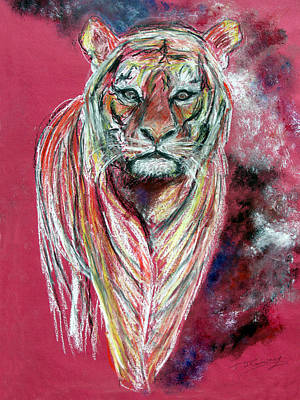 Animals Drawings - Tiger by Tom Conway