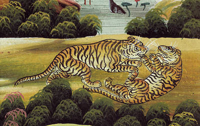 Fighting Tigers Photograph - Tigers by British Library