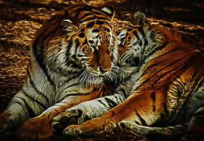 Siberian Digital Art - Tigers Digital Art by Ernie Echols