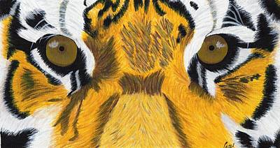 Painting - Tiger's Eyes by Bav Patel