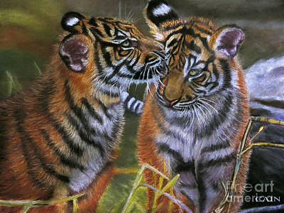 Painting - Tigers In Love Large Art Print by William Cain