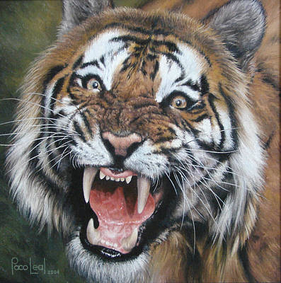 Paco Painting - Tigre by Paco Leal