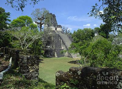 Photograph - Tikal Guatemala by Craig Lovell