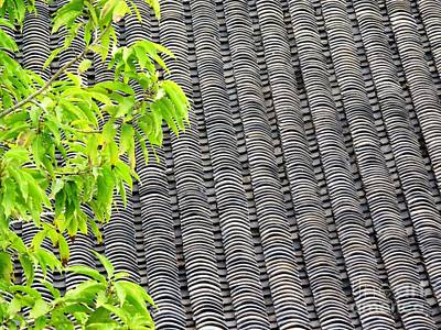 Art Print featuring the photograph Tiled Roof by Ethna Gillespie