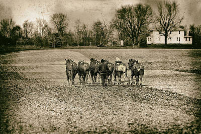 Amish Community Photograph - Tilling The Fields by Tom Mc Nemar