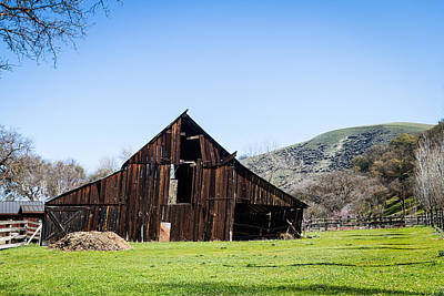 Photograph - Tilted Old Barn In Meadow by Dina Calvarese