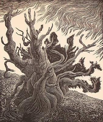 Grand Canyon Drawing - Timberline Traveler by Maria Arango Diener