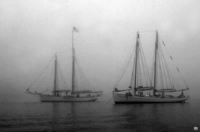Photograph - Timberwind And Sylvina Beal by John Meader