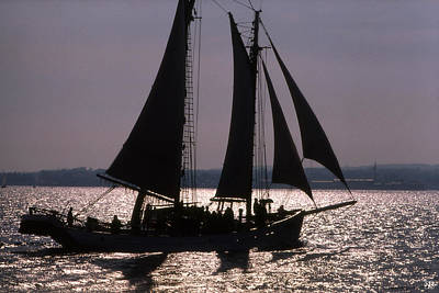 Photograph - Timberwind Silhouette by John Meader
