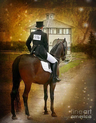 Hanovarian Dressage Horse Photograph - Time For Dressage by Linda Finstad