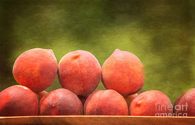 Photograph - Time For Peaches by Kim Henderson