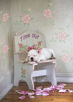 Sleeping Puppy Painting - Time Out Variant 1 by Lisa Jane
