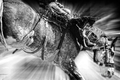 Photograph - Time To Saddle Bronc 2 by Lincoln Rogers