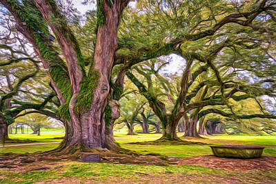 Live Oaks Digital Art - Time Travel - Paint by Steve Harrington