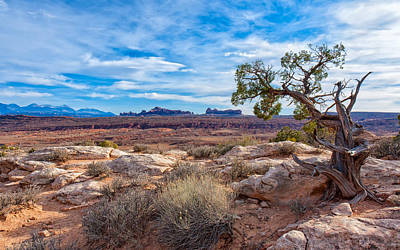 Photograph - Timeless Arches National Park by John M Bailey