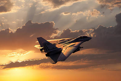 F-14 Digital Art - Timeless Beauty Tomcat by Peter Chilelli