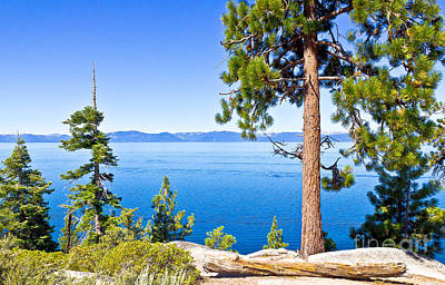 Photograph - Timeless - Lake Tahoe by John Waclo