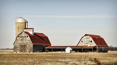 Cornfield Photograph - Timeless Twosome by Cricket Hackmann