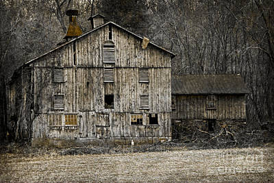 Photograph - Tin Cup Chalice Rustic Barn by John Stephens