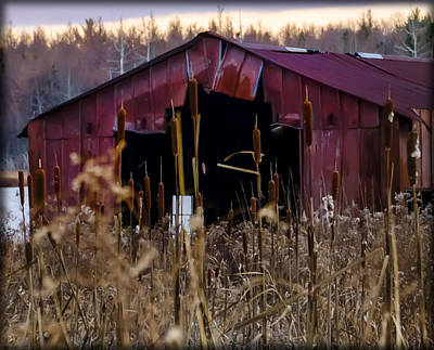 Tin Roof Rusted Art Print by Bill Cannon