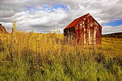 Barn Photograph - Tin Roof Rusted by Marcia Colelli