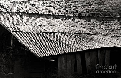 Photograph - Tin Roof by Tom Brickhouse