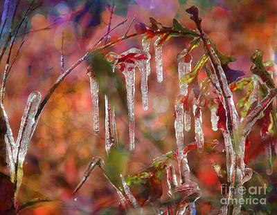 Photograph - Tiny Arch With Ice by Judi Bagwell
