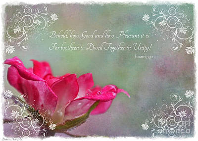 Photograph - Tiny Miniature Rose In Pink And White With Verse by Debbie Portwood