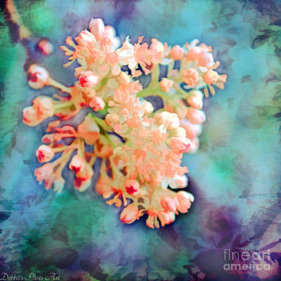 Photograph - Tiny Spring Tree Blooms - Digital Color Change And Paint by Debbie Portwood