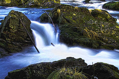 Art Print featuring the photograph Tiny Water Fall by Timothy Latta