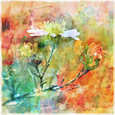 Photograph - Tiny Wildflowers - Digital Paint IIi by Debbie Portwood