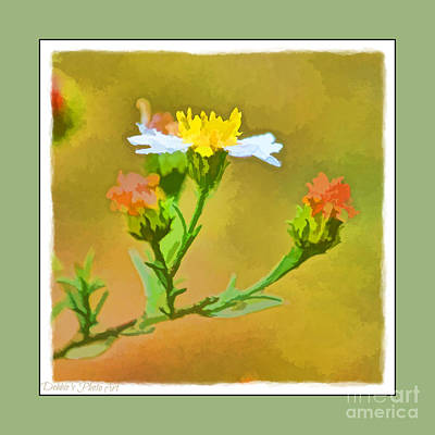Photograph - Tiny Wildflowers-digital Paint I - Green  Frame by Debbie Portwood