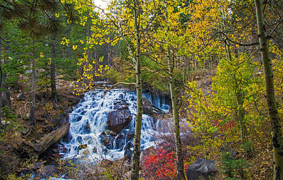 Photograph - Tioga Creek Fall Cascades by Lynn Bauer