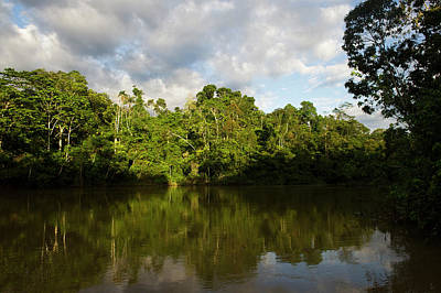 Amazon River Photograph - Tiputini River Scenic, Yasuni National by Pete Oxford