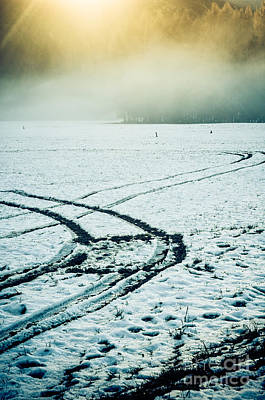 Photograph - Tire Signs In Snow by Silvia Ganora